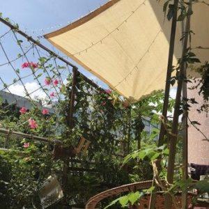 Opiniones de Toldos Sombra Exterior Jardín Planta para comprar por Internet
