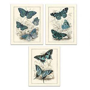 La mejor selección de lona estirada impresion mariposa animal para comprar por Internet