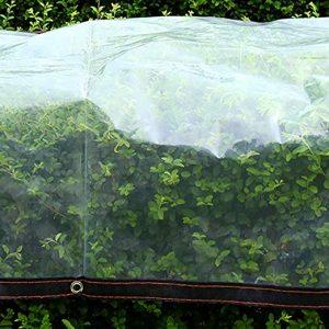 Opiniones de Lona Jardin Plantas Transparente Prueba para comprar