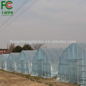 Lona Transparente Polietileno Invernadero Agricultura disponibles para comprar online – Favoritos por los clientes