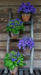 Listado de decoracion jardin Macetas flores para comprar en Internet – Los Treinta más vendidos