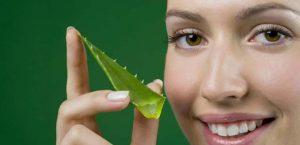 Opiniones y reviews de propiedades de aloe vera para la piel para comprar online