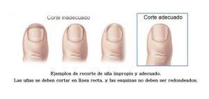 cuidado de los pies y las uñas disponibles para comprar online – Los Treinta más solicitado