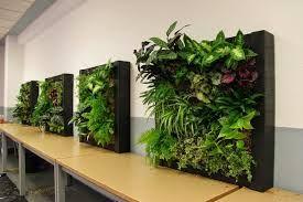 Opiniones y reviews de jardin vertical artificial ikea para comprar en Internet – Los más solicitados