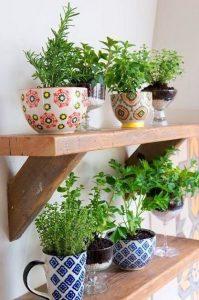 Jardin De Hierbas Aromaticas Tu disponibles para comprar online