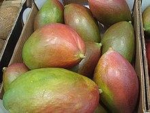 La mejor selección de cuantas clases de mango hay para comprar On-line – Los favoritos