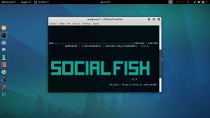 El mejor listado de herramientas kali linux para comprar online – Los 20 preferidos