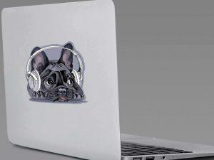 Ya puedes comprar on-line los vinilo portatil