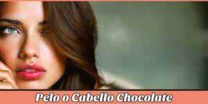 Opiniones de tinte de pelo marron chocolate para comprar en Internet – Los más vendidos