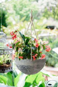 La mejor recopilación de decoracion jardin Macetas colgantes para comprar online – Los más solicitados