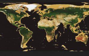 crema solar biz que puedes comprar en Internet – Los Treinta favoritos