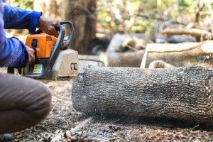 aserrar madera disponibles para comprar online