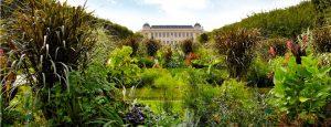 Catálogo de Jardin para comprar online
