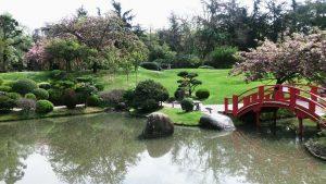 Opiniones de Jardin japonaise para comprar online – Los 20 mejores