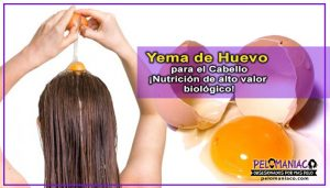 Opiniones de mascarillas para el cabello con huevo y miel para comprar
