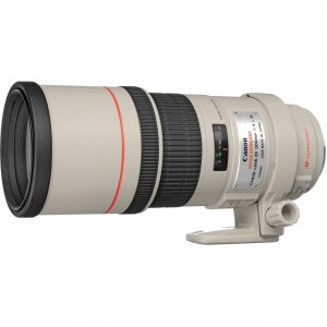 Lista de 300 mm para comprar On-line